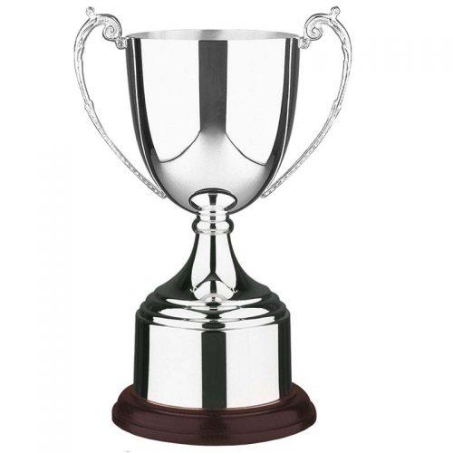 Hallmark Silver Awards